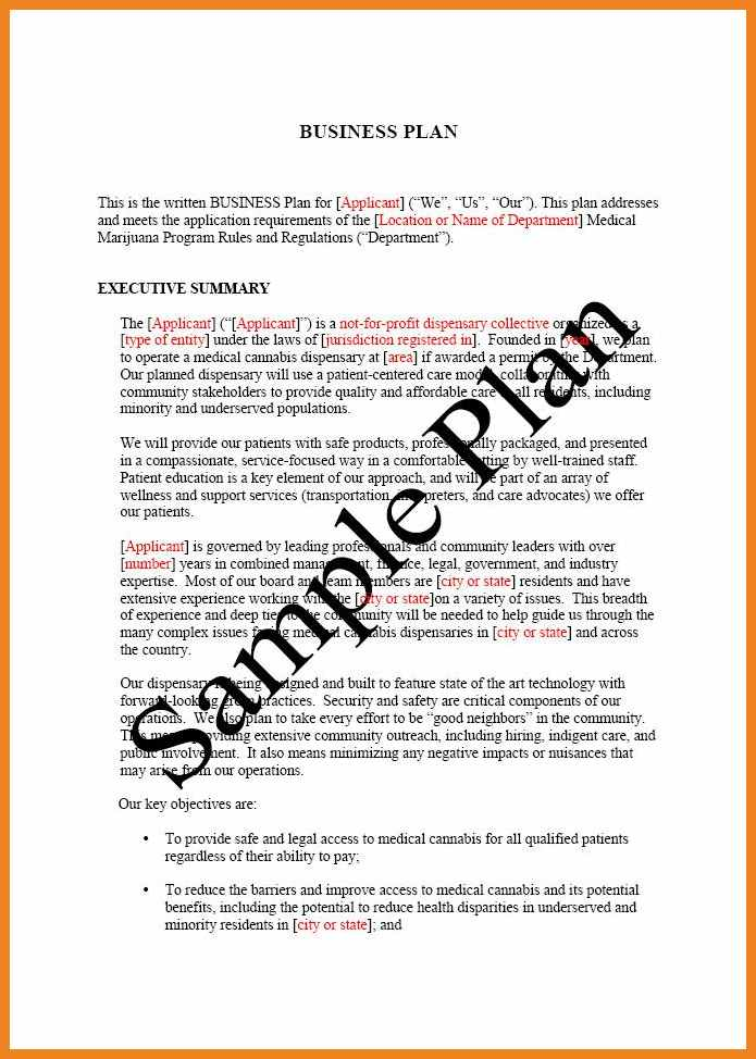 template for writing a business plan Dorit.mercatodos.co