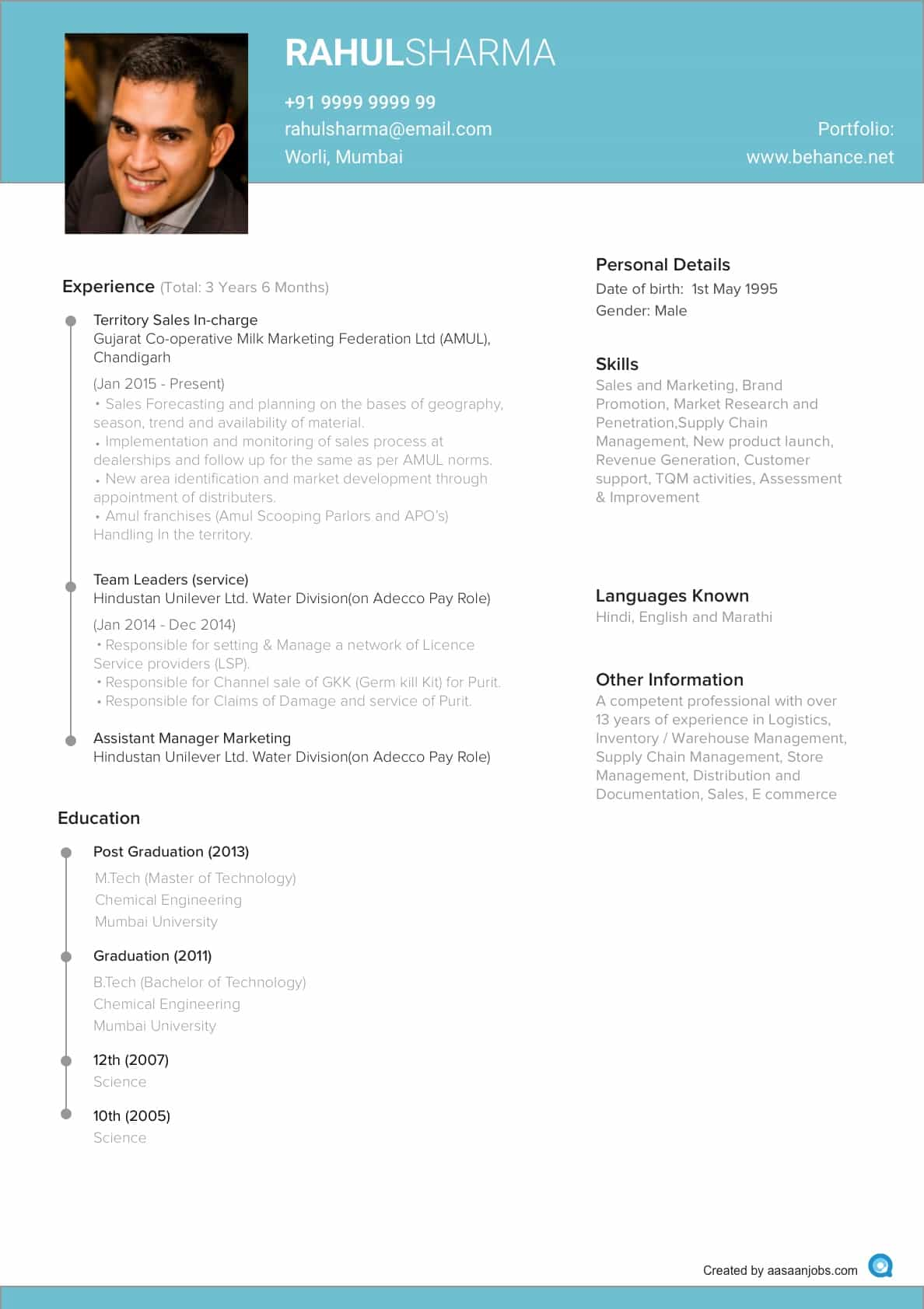 Download New Resume Format Sample | Diplomatic Regatta