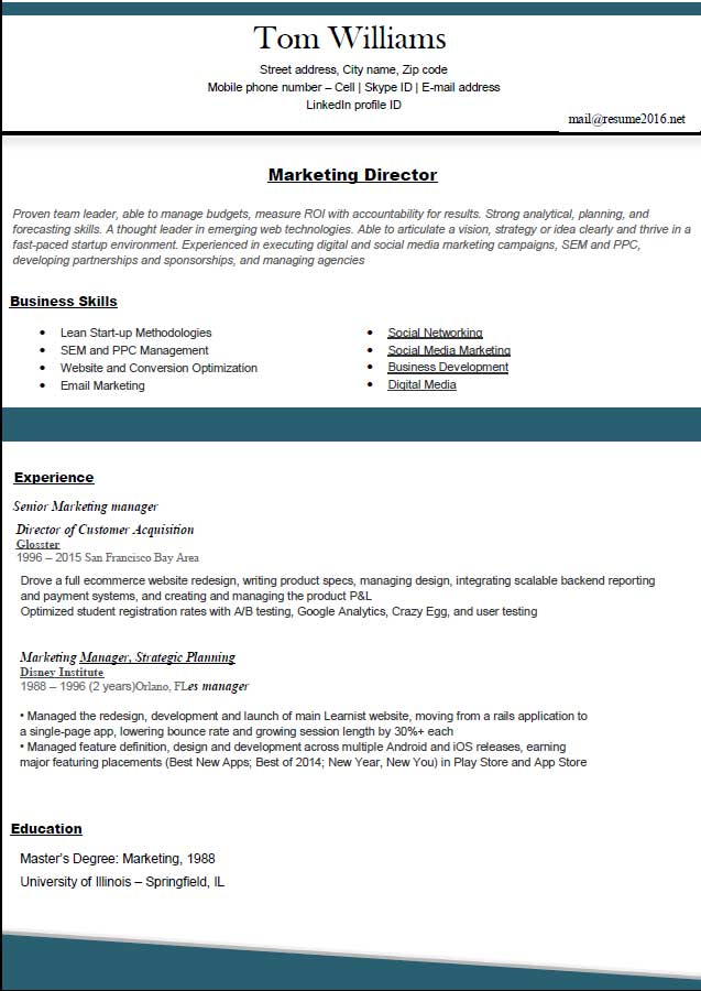 resume formats 2016 marketing director experience business skills