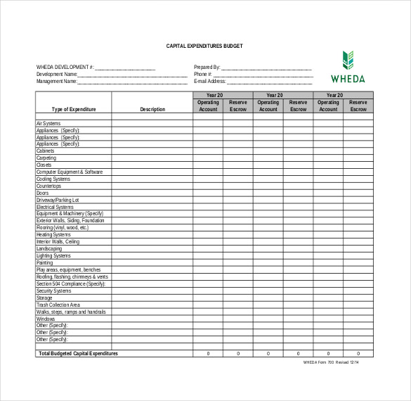8+ Expenditure Budget Templates – Free Sample, Example, Format