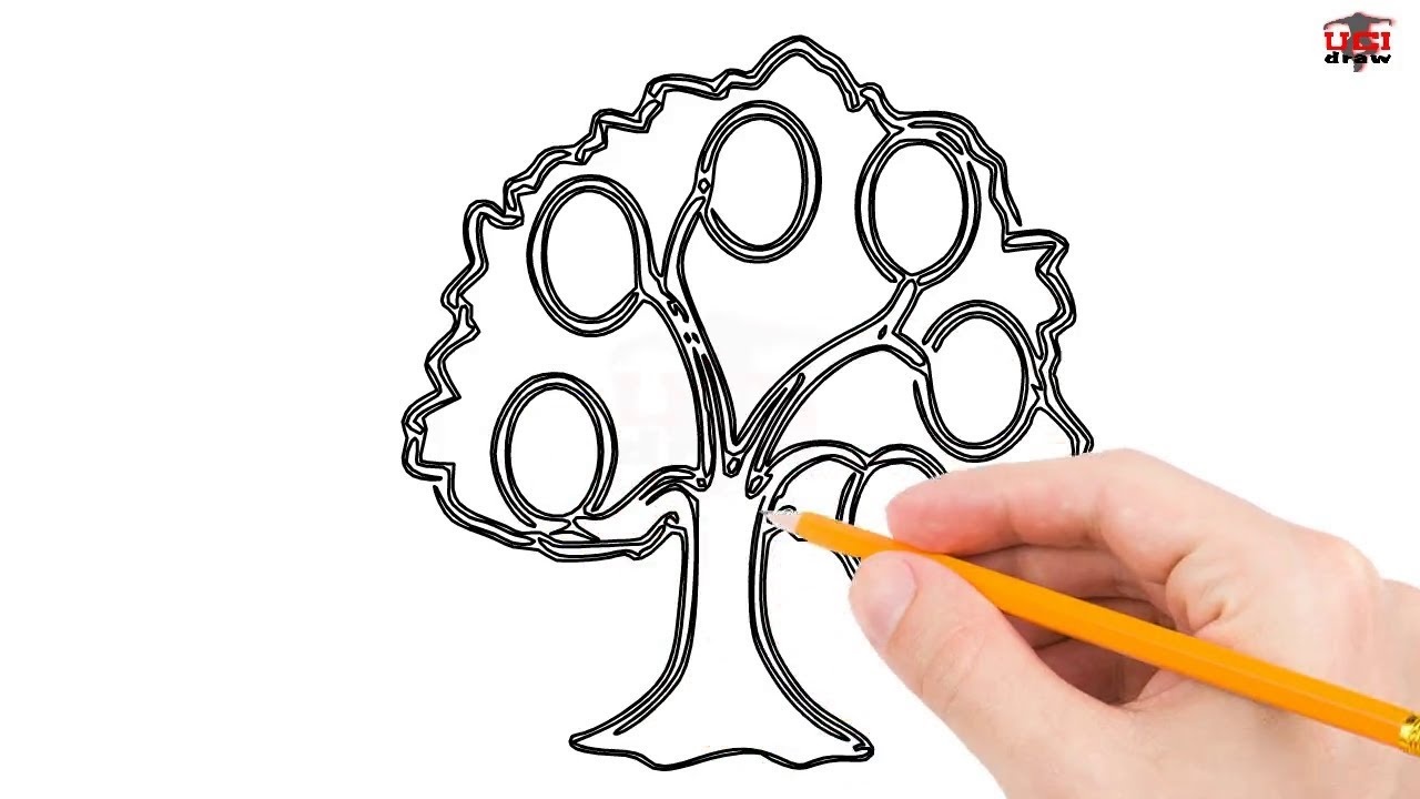 How to Draw a Family Tree Step by Step Easy for Beginners/Kids