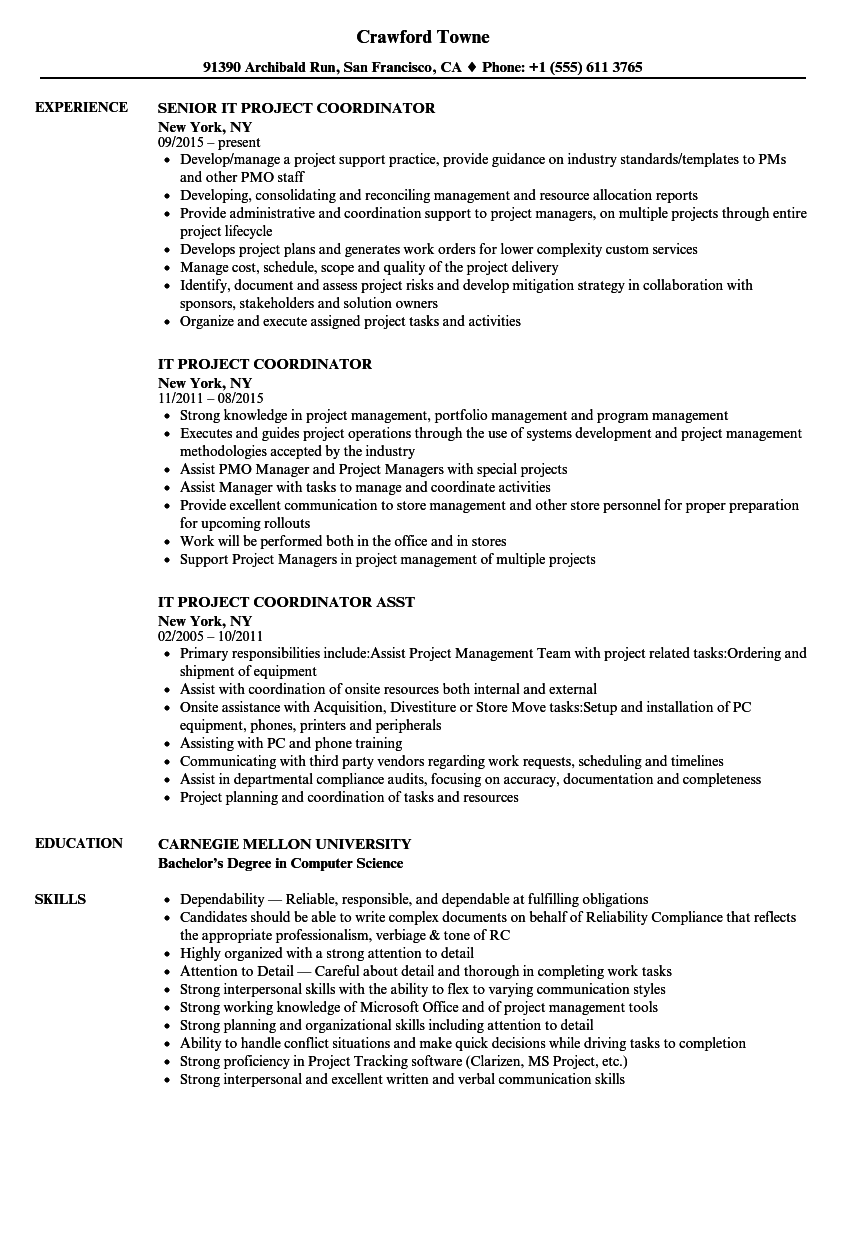 IT Project Coordinator Resume Samples | Velvet Jobs